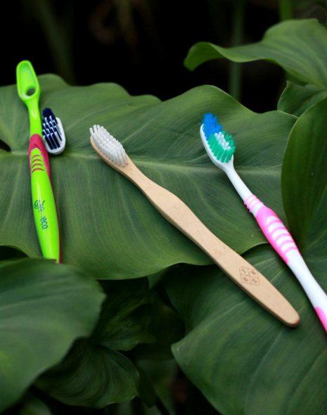 Escovas de dentes, de recargas, de bambu e convencional